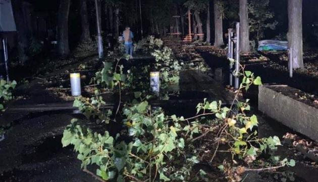 В Івано-Франківську буревій повалив дерева та електроопори