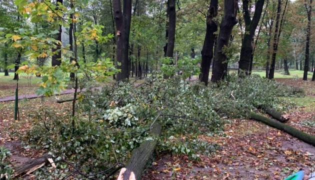 У Франківську за пів години випала майже половина місячної норми опадів