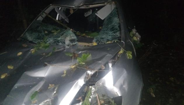 На Вінниччині дерево впало на автівку, водій загинув