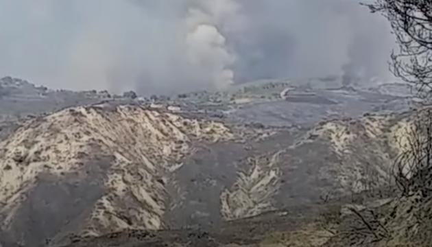 Лісові пожежі в Сирії: на боротьбу з вогнем кинули армійські вертольоти