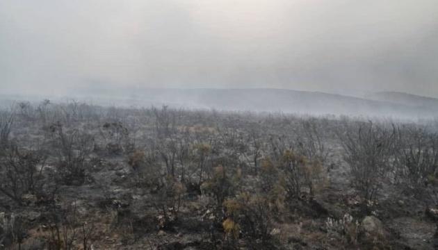 На горі Кіліманджаро другу добу гасять лісову пожежу