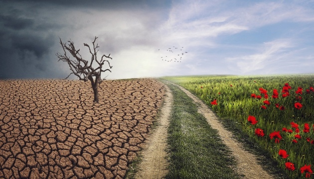 Топ-8 важливих екологічних новин