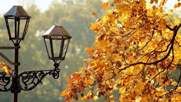20 октября: народный календарь и астровестник