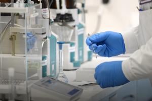 В Украине запустили чат-бот для проверки расходов больниц на борьбу с COVID-19