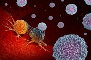 Израильские ученые впервые смогли удалить раковые клетки у мышей