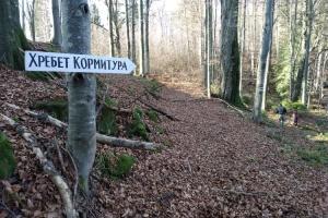 На Прикарпатті проклали нову туристичну стежку на «спину дракона»