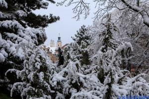 Україну накрив сніжний циклон: які області замете найбільше