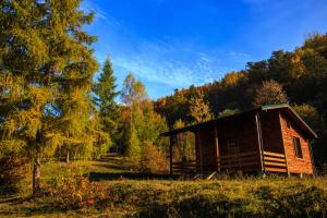 Ужанською долиною на Закарпатті прокладуть 10 нових маршрутів для туристів