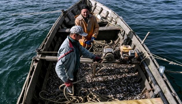 """""""Золото Азова"""". Як ловлять рибу невипадкові люди моря"""