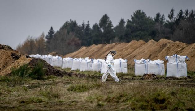 У Данії вже встигли знищити 10 мільйонів норок