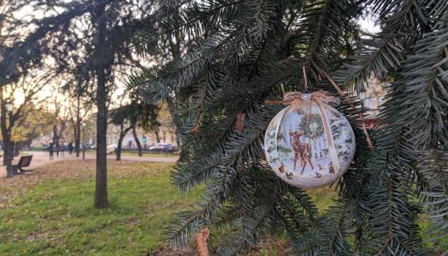На Закарпатье начали украшать елки в городах и ОТГ