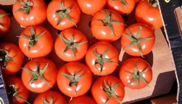 В Украине подорожали турецкие помидоры