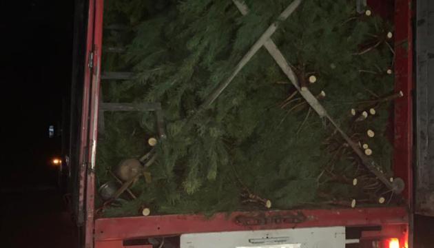 «Новогодняя контрабанда»: на границе перехватили фуру с 800 соснами