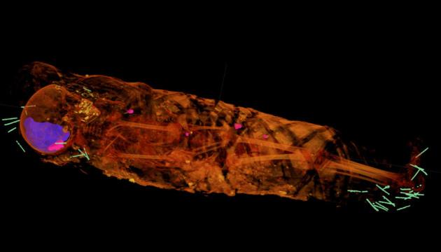 У 2000-летней мумии ребенка нашли десятки артефактов
