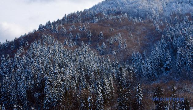 На Львовщине создали национальный природный парк