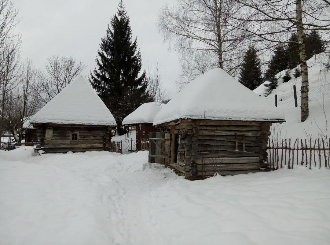 «Ковидни» лыжи на Закарпатье