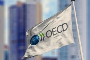 Україна сподівається на розвиток співпраці з ОЕСР - Мінекономіки