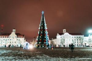 В Чернигове под «живую» музыку засияла елка