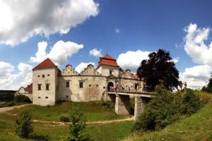 На історичних локаціях Львівщини до Дня Європи піднімуть прапор ЄС