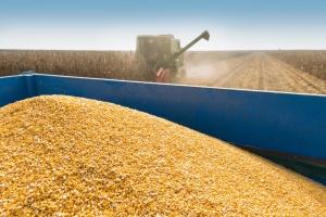 Ucrania ha exportado más de 27 millones de t de cereales y legumbres en un año