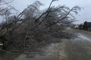 Bad weather leaves 173 towns and villages in Ukraine without electricity