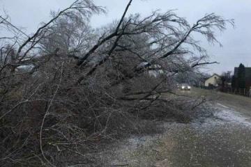 El mal tiempo deja sin electricidad a 173 ciudades y pueblos de Ucrania