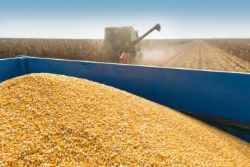 Ukraine exportierte seit Juli 2020 27,2 Mio. Tonnen Getreide
