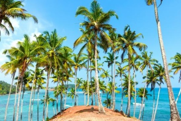 Le Sri Lanka accueille les premières touristes ukrainiens depuis huit mois