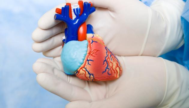 Французская компания продала первое искусственное сердце