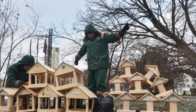 Une action «Nourrir les oiseaux en hiver» se déroule à Kyiv