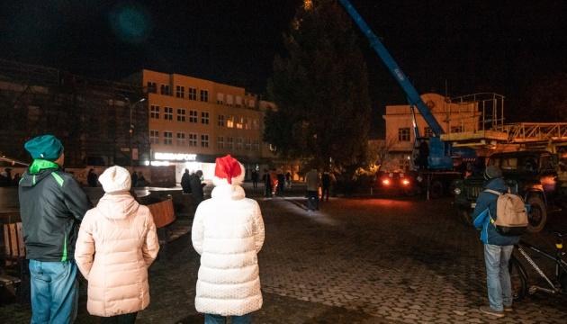 В Ужгороді встановили 12-метрову живу ялинку