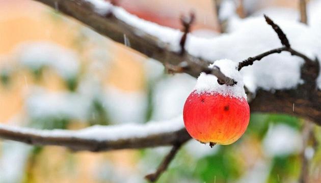 16 декабря: народный календарь и астровисник