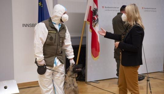 В австрійській армії навчили собаку виявляти коронавірус