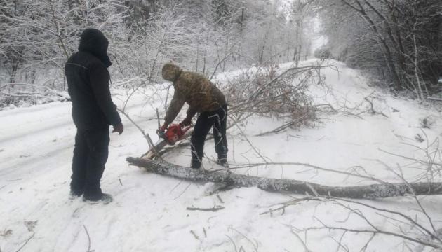 На Чернігівщині негода повалила понад 200 дерев