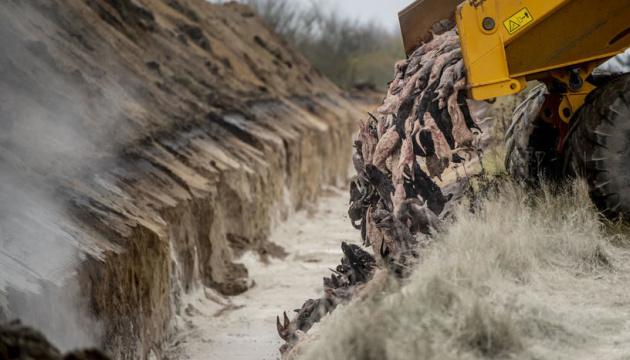 Данія викопає та кремує мільйони вбитих раніше норок