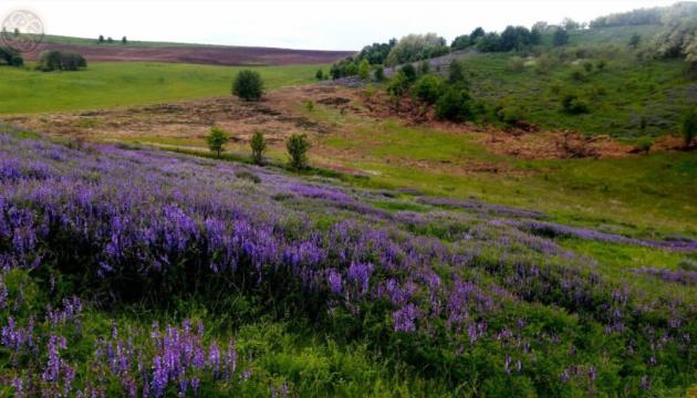 На Черкащині ініціювали створення національного парку