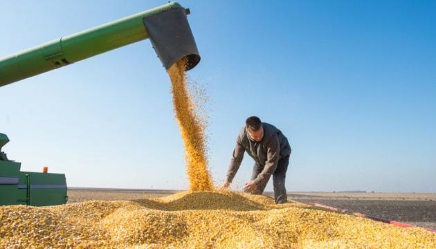 На Чернігівщині зібрали рекордний врожай зернових
