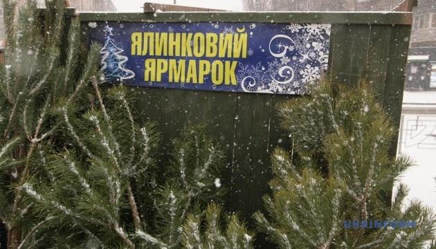 На ялинкових базарах Києва провели екорейди