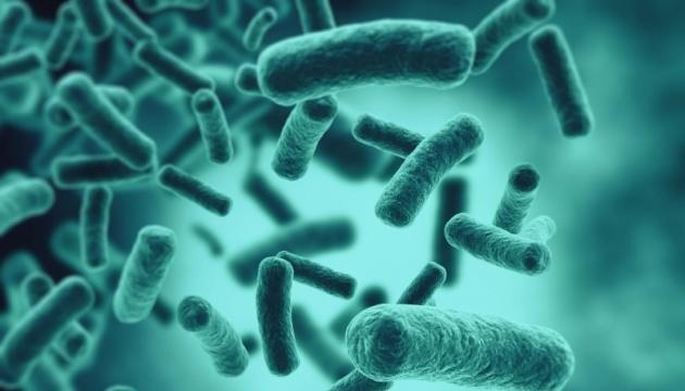 У США вчені представили антибіотик, що підвищує імунітет
