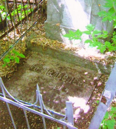 занадбана могила подружжя, старе Єврейське кладовище, саратов
