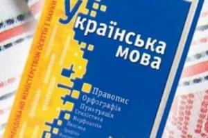 Общественность требует от властей не вмешиваться в закон о языке