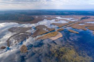 Google оцифрувала ще 10 національних природних парків України
