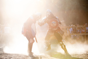 У Вінниці відбудеться лицарський турнір пам'яті Максима Шимка