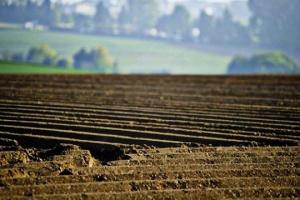 MDECA: La prioridad del Gobierno en 2021 es lanzar un mercado de tierras