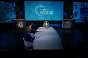 У Нідерландах стартував онлайн-саміт з питань клімату