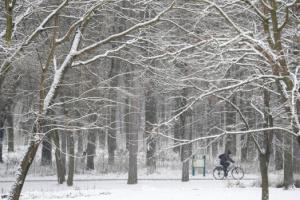 Польщу замело снігом, десятки тисяч людей — без світла