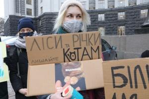 «Больше земли для природы, а не под огороды»: под Кабмином - акция протеста