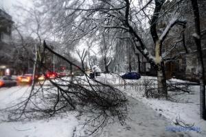 Одещину засипало снігом, 53 населені пункти – без світла
