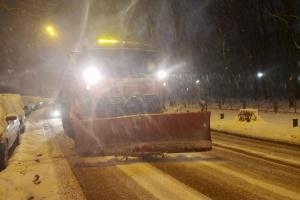 Снігопад у Києві: на дороги вивели 359 одиниць техніки