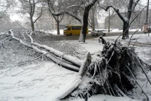 Одессу засыпает снегом - «красный» уровень опасности